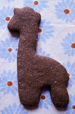 giraffe cookie